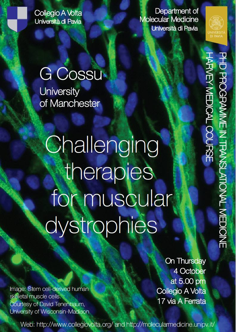 Stem Cell Therapies for Duchenne Muscular Dystrophy