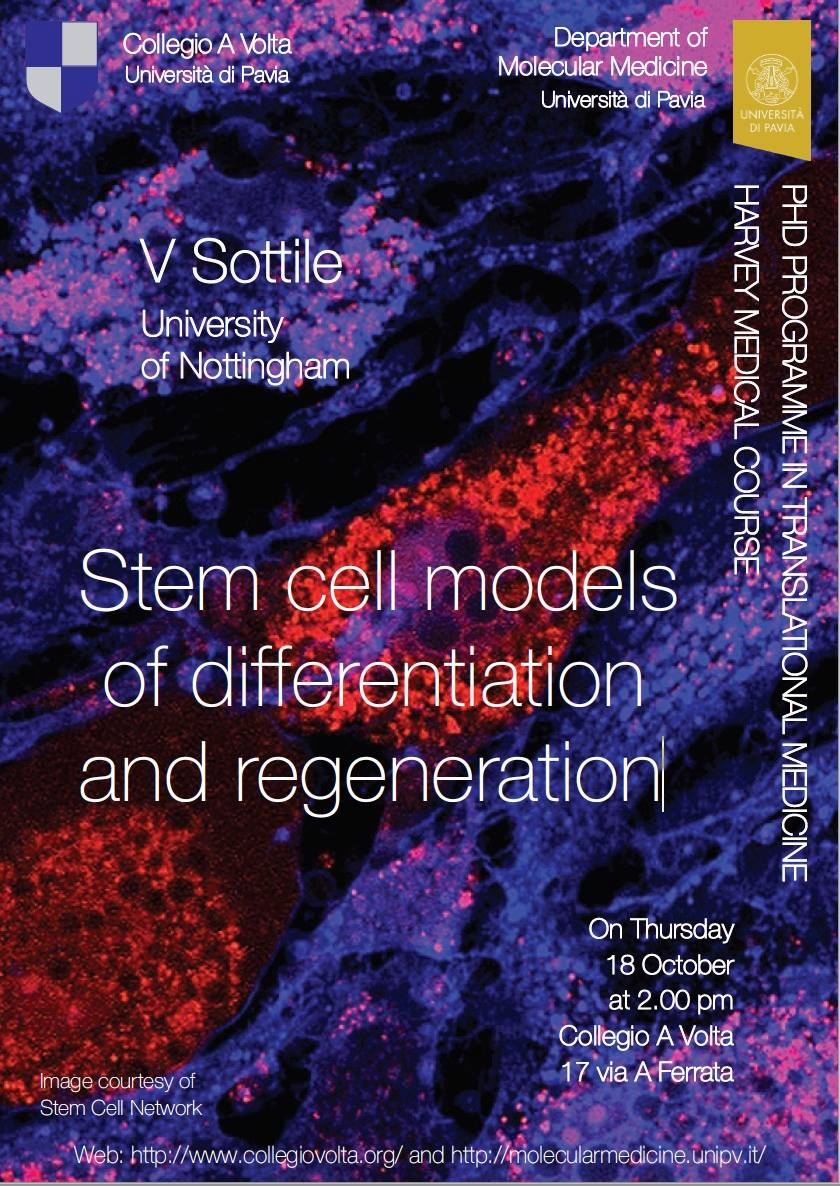 Stem Cell Models of Differentiation and Regeneration